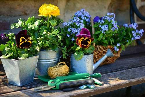 Altersgerechter Garten mit Pflanztisch
