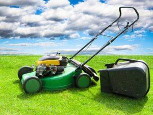 Rasenmäher - Elektrische und benzinbetriebene Gartengeräte müssen gut gepflegt werden