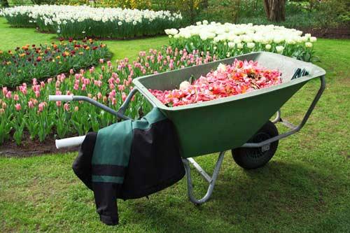 Die gute alte Gartenschubkarre hat einen Nachfolger: es gibt die Motorschubkarre