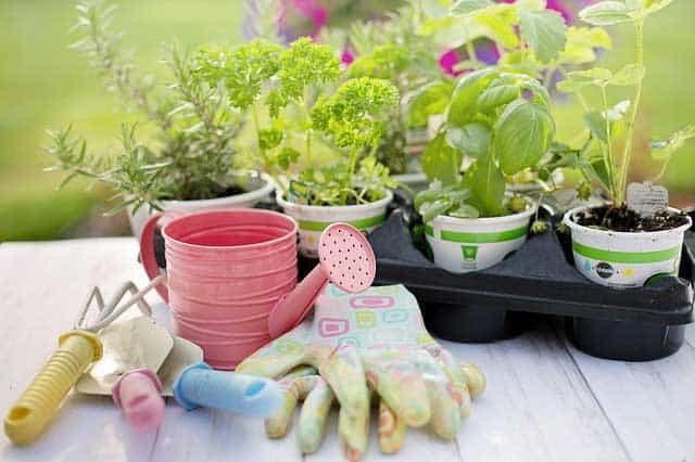 Gartenarbeit mit dem richtigen Gartenzubehör