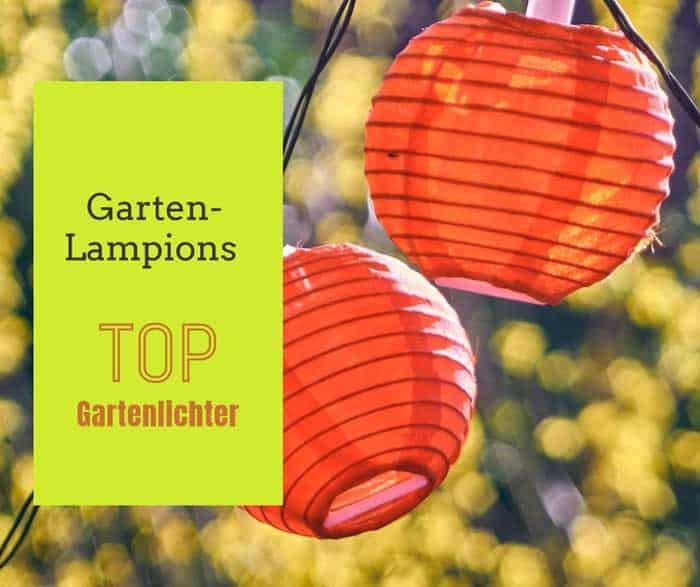 Gartenlampions