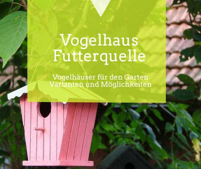 Vogelhaus Futterplatz