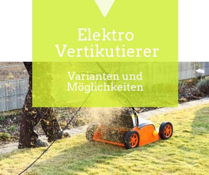 Ein Elektro-Vertikutierer für wichtige Rasenarbeiten de.depositphotos.com