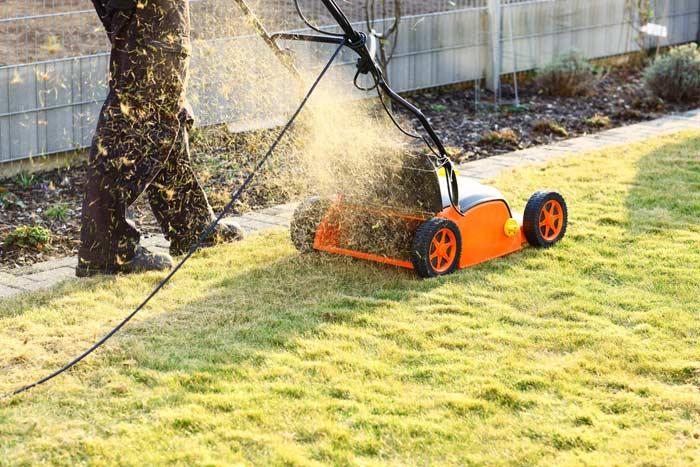 Ein Elektro-Vertikutierer für Rasenarbeiten zur Belüftung de.depositphotos.com