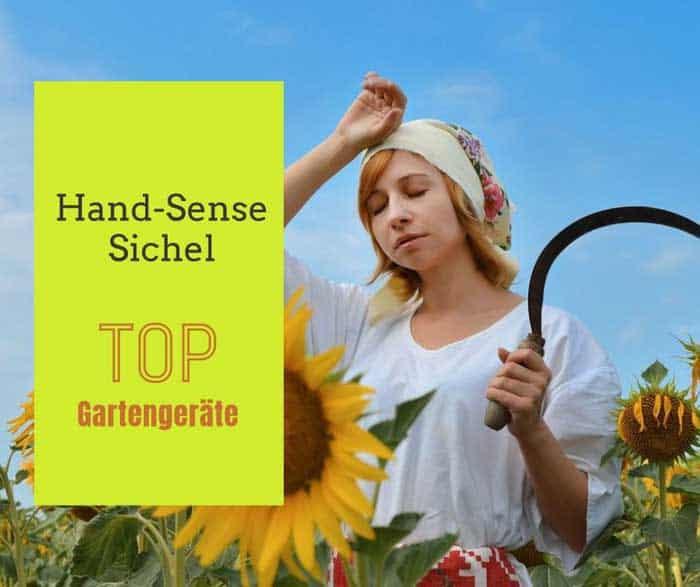 Handsense Handsichel