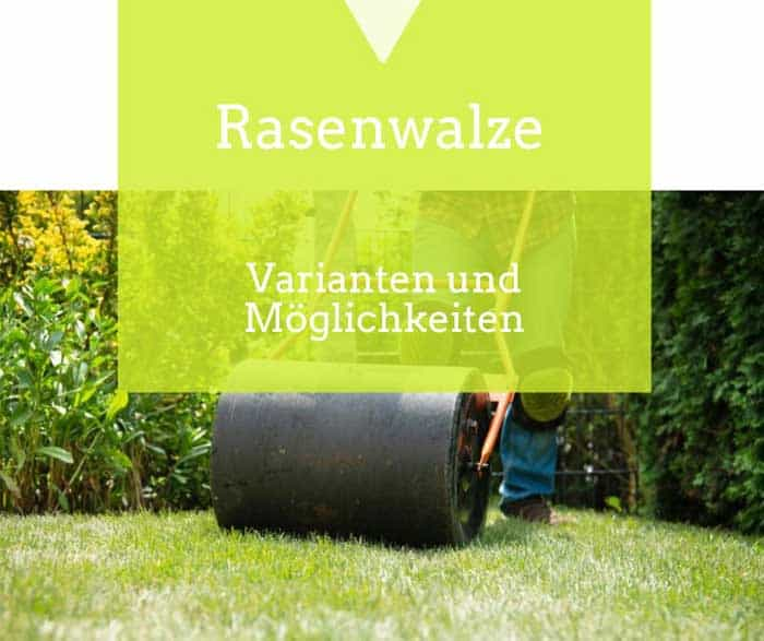 Die Rasenwalze für neuen Rasen de.depositphotos.com