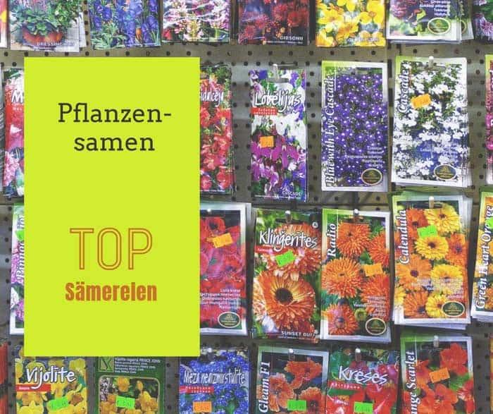 Pflanzensamen kaufen
