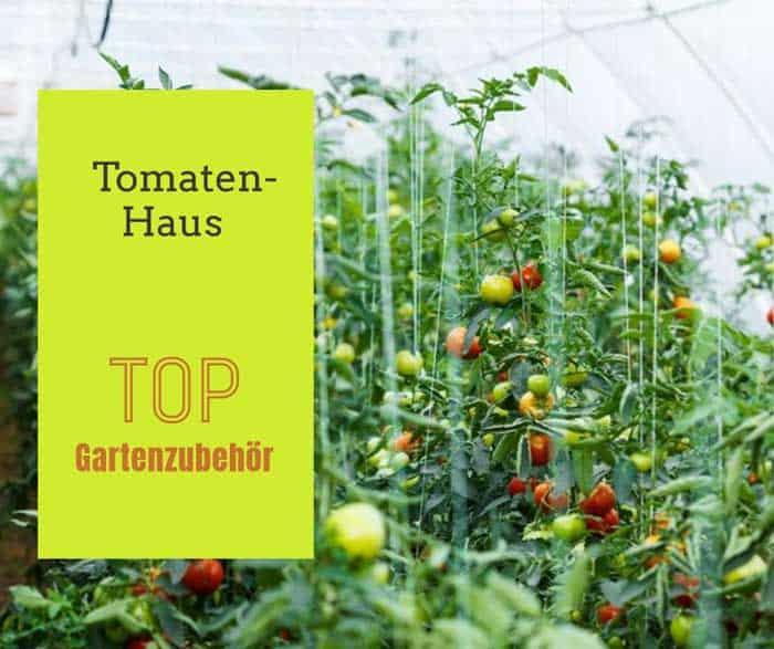 Tomatenhaus depositphotos.com